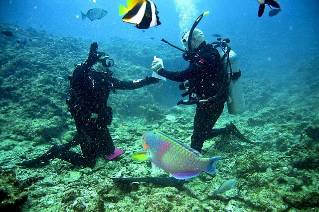 Scuba Diving In India Lakshadweep