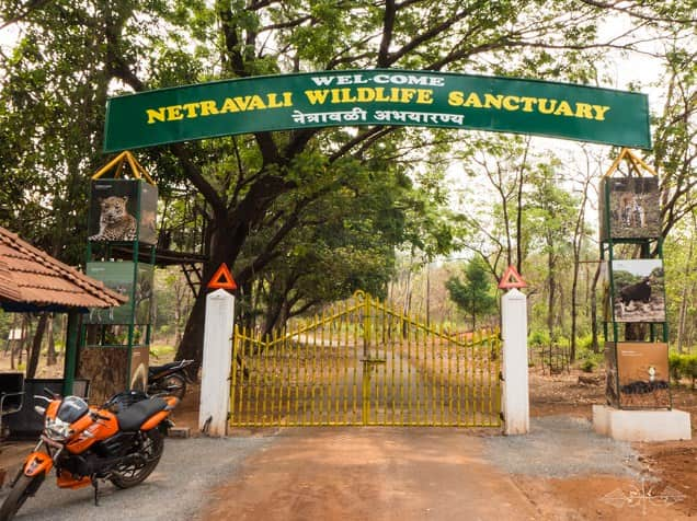 Netravali Wildlife Sanctuary, Netravali Closer To Goa