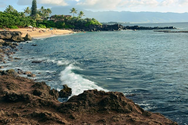 Things To Do In Oahu North Shore And Circle Island