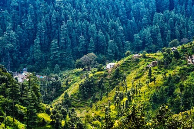 Majkhali Places To Visit In Ranikhet Tourism