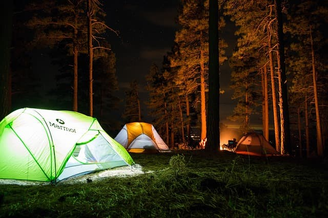 Forest Camping In Munnar