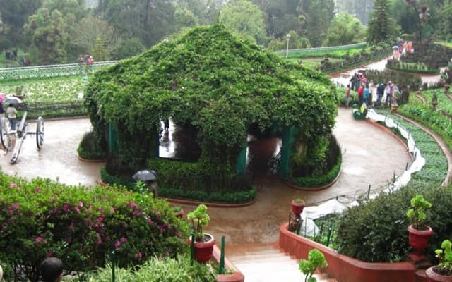 Mesmerize Amidst The Stunning View Of Botanical Gardens