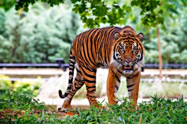 National Zoological Park Delhi Tourist Places