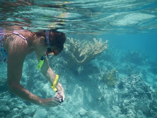 Best Beaches In Oahu: Makapuu Beach Snorkeling
