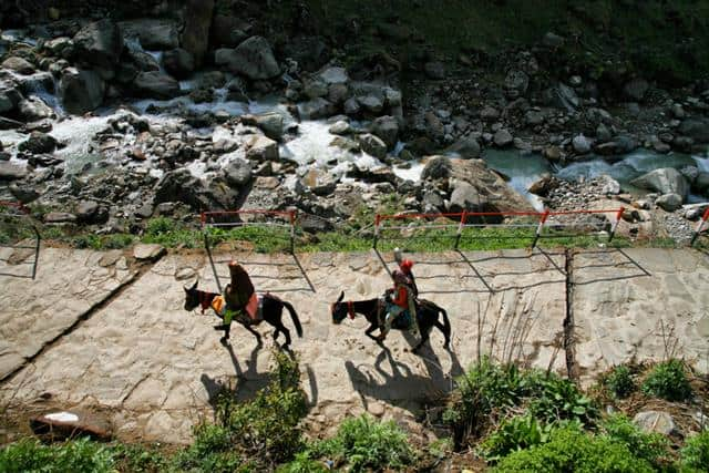 Gaurikund To Kedarnath By Horse