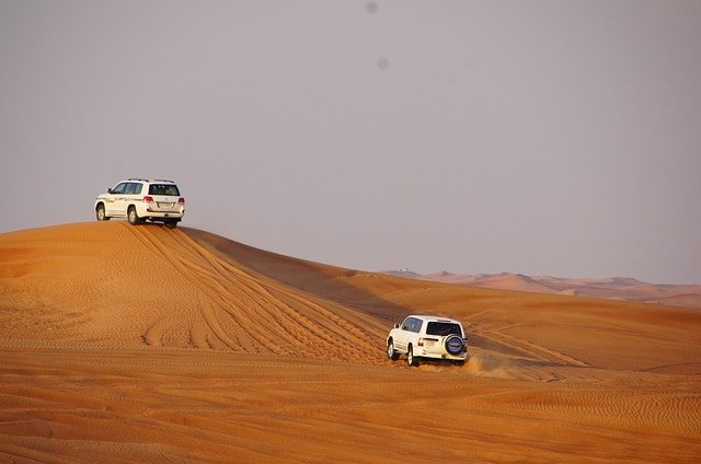 Jeep Safari In Bikaner Desert Tour