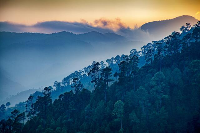 Explore Ranikhet Tourism: Places To Visit In Ranikhet Uttarakhand