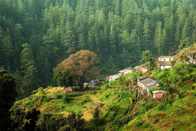 Best Time To Visit Ranikhet Uttarakhand