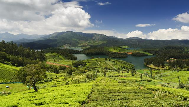 Ooty Tourist Place: Places To Visit In Ooty Tourism