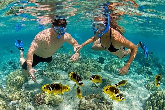 Things To Do In Florida Keys Vacation: Fort Zachary Taylor Snorkeling