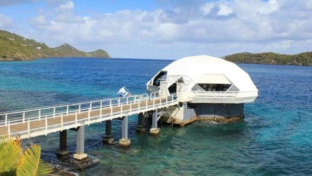 Things To Do In St Thomas Coral World Ocean Park