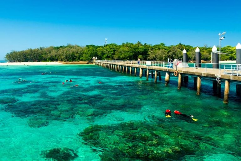 Cairns Tourism: Things To Do In Cairns Tours
