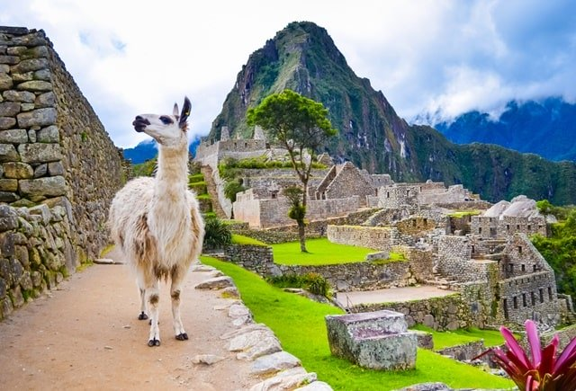 What Was The Purpose Of Building Machu Picchu?