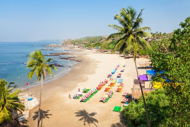 Best Destination For New Year Eve In India: Goa