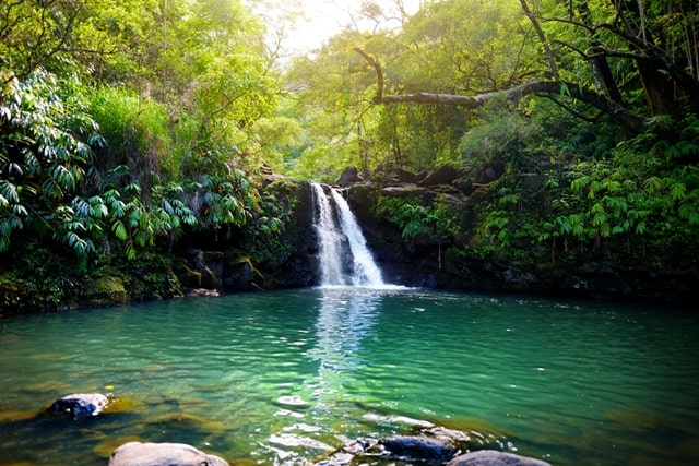 Maui Waterfall Tours