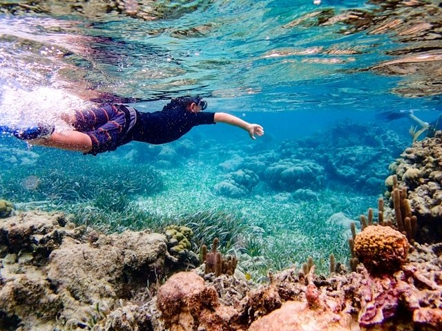 Ambergris Caye Snorkeling Tours And Scuba Diving