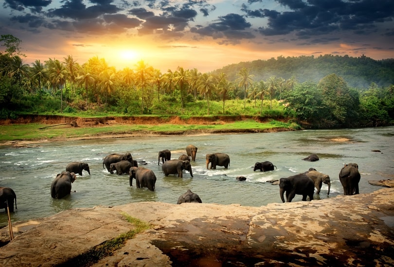 15 Best Places To Visit In Sri Lanka Tourism