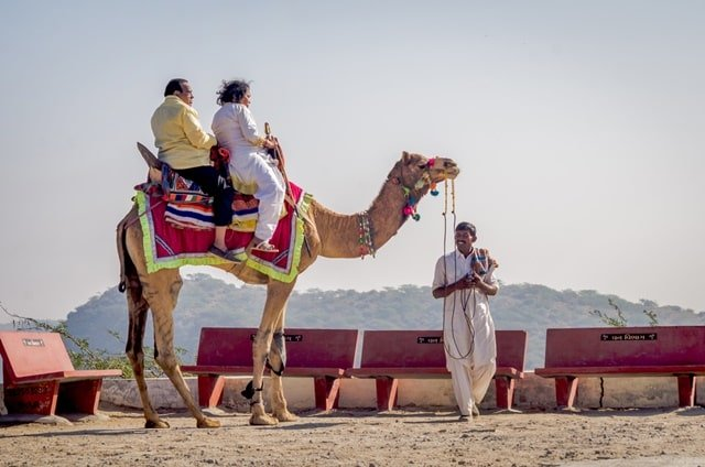 Things To Do During The Rann Of Kutch Festival